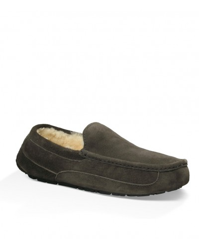 Ascot in Charcoal by UGG